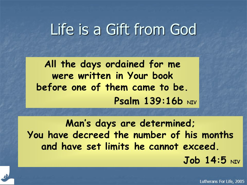 Lutherans For Life, 2005 Life is a Gift from God All the days ordained for me were written in Your book before one of them came to be.