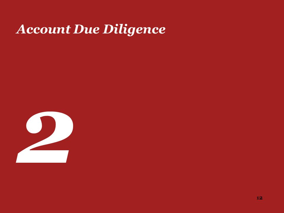 12 Account Due Diligence 2