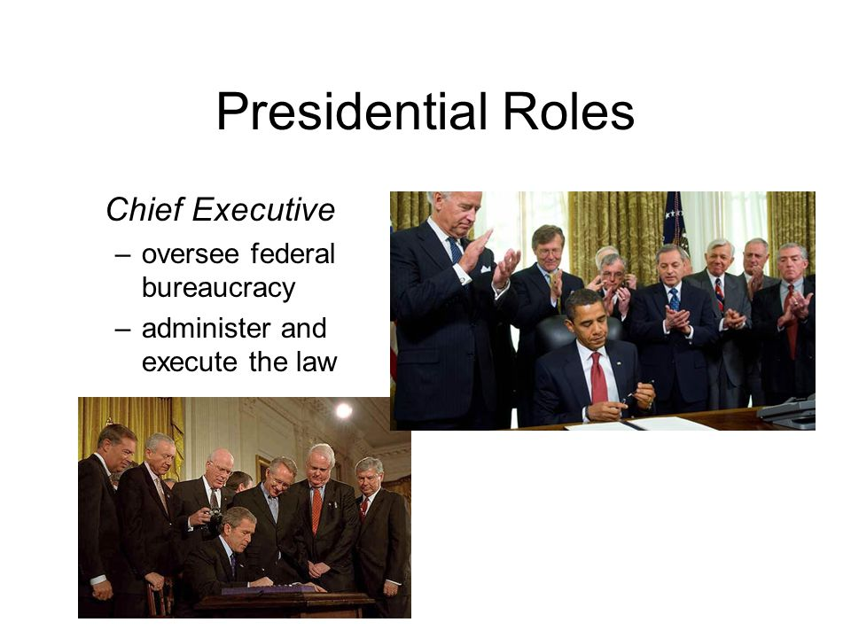 Presidential Roles Chief Executive –oversee federal bureaucracy –administer and execute the law