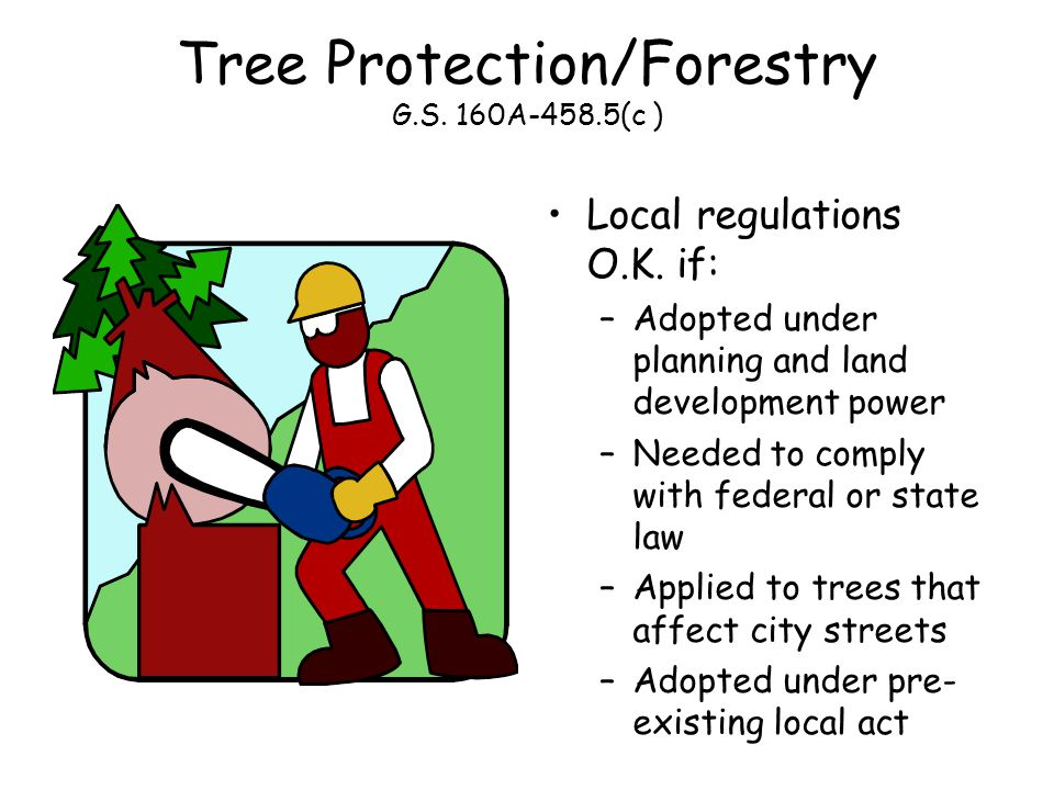 Tree Protection/Forestry G.S. 160A-458.5(c ) Local regulations O.K.