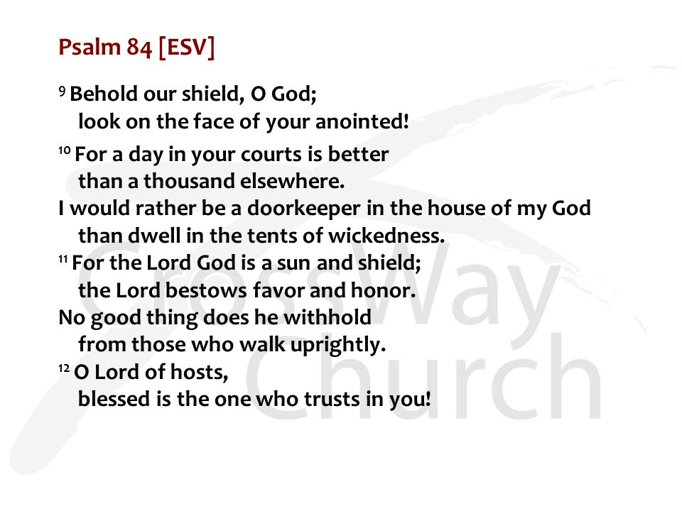 Psalm 84 [ESV] 9 Behold our shield, O God; look on the face of your anointed.