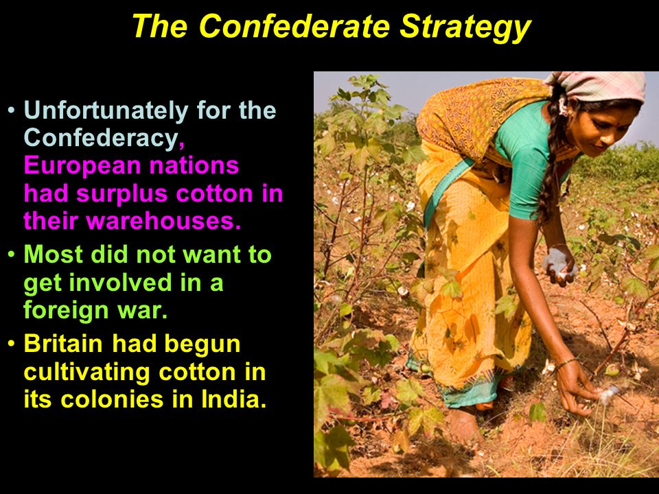 The Confederate Strategy Unfortunately for the Confederacy, European nations had surplus cotton in their warehouses.