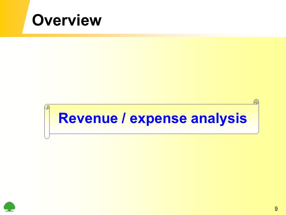 9 Overview Revenue / expense analysis
