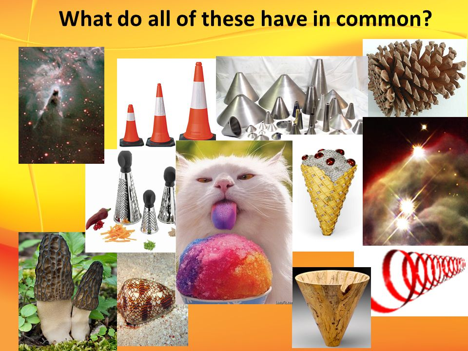 What do all of these have in common?