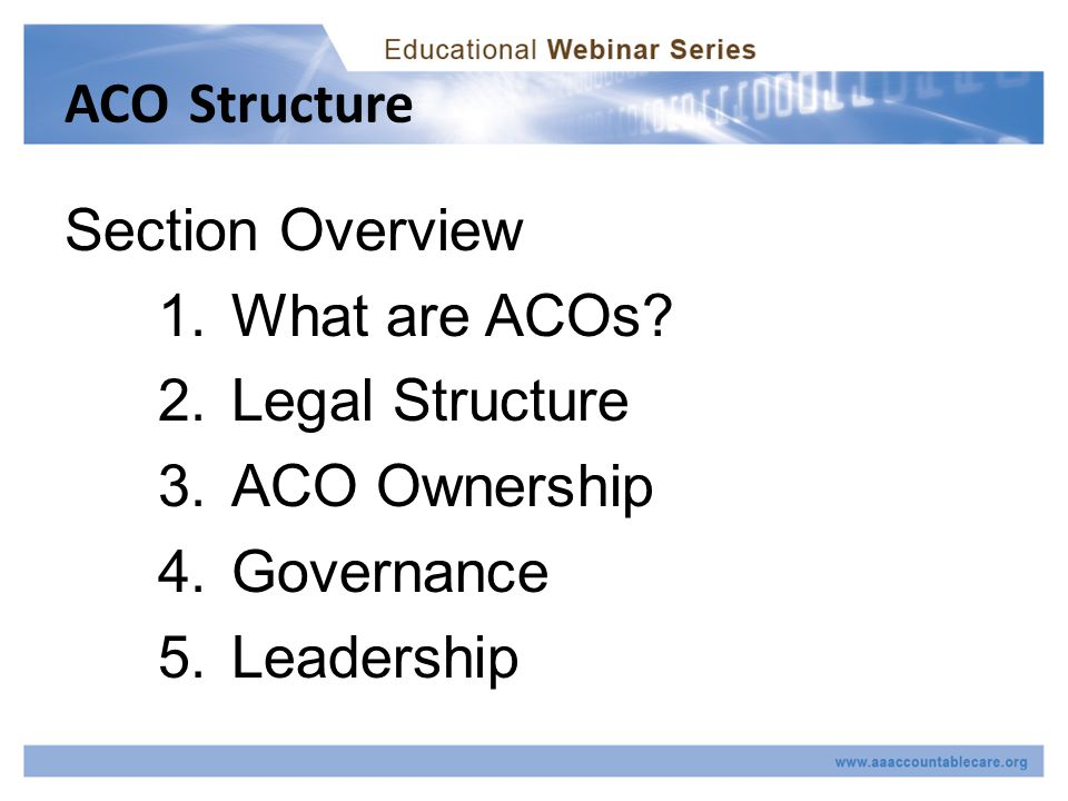 ACO Structure Section Overview 1.What are ACOs.