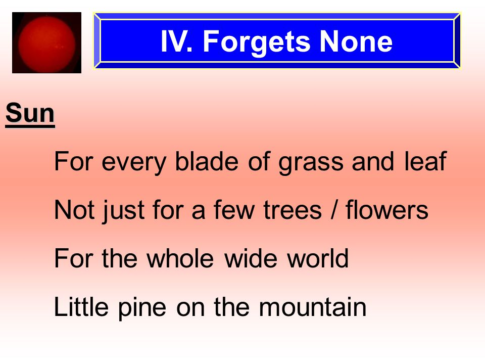 IV. Forgets None Sun For every blade of grass and leaf Not just for a few trees / flowers For the whole wide world Little pine on the mountain