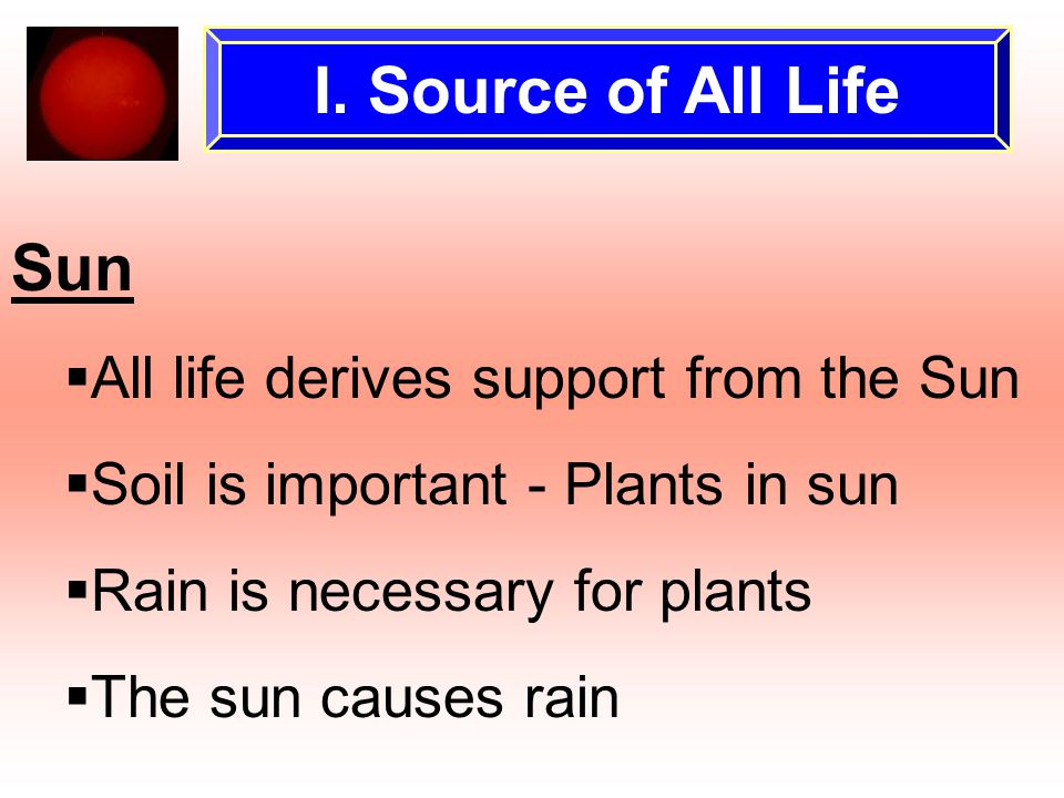 I. Source of All Life Sun  All life derives support from the Sun  Soil is important - Plants in sun  Rain is necessary for plants  The sun causes