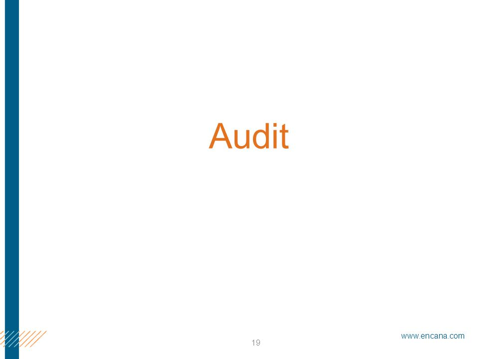 www.encana.com 19 Audit