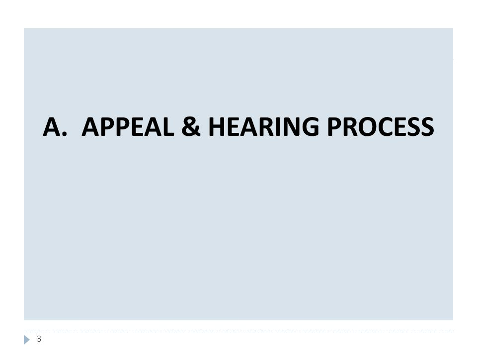 3 A. APPEAL & HEARING PROCESS