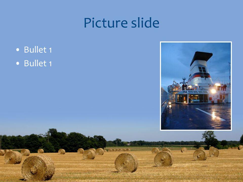 Picture slide Bullet 1