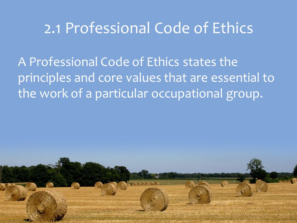2.1 Professional Code of Ethics A Professional Code of Ethics states the principles and core values that are essential to the work of a particular occupational group.