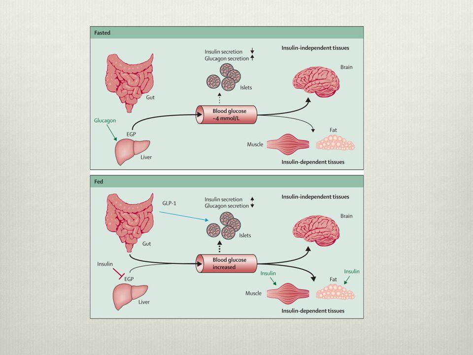 Hyperglycemia  Treatment  ABC's  IV fluids.