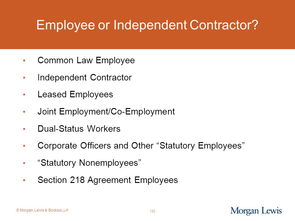 © Morgan, Lewis & Bockius LLP Employee or Independent Contractor? Common Law Employee Independent Contractor Leased Employees Joint Employment/Co-Empl
