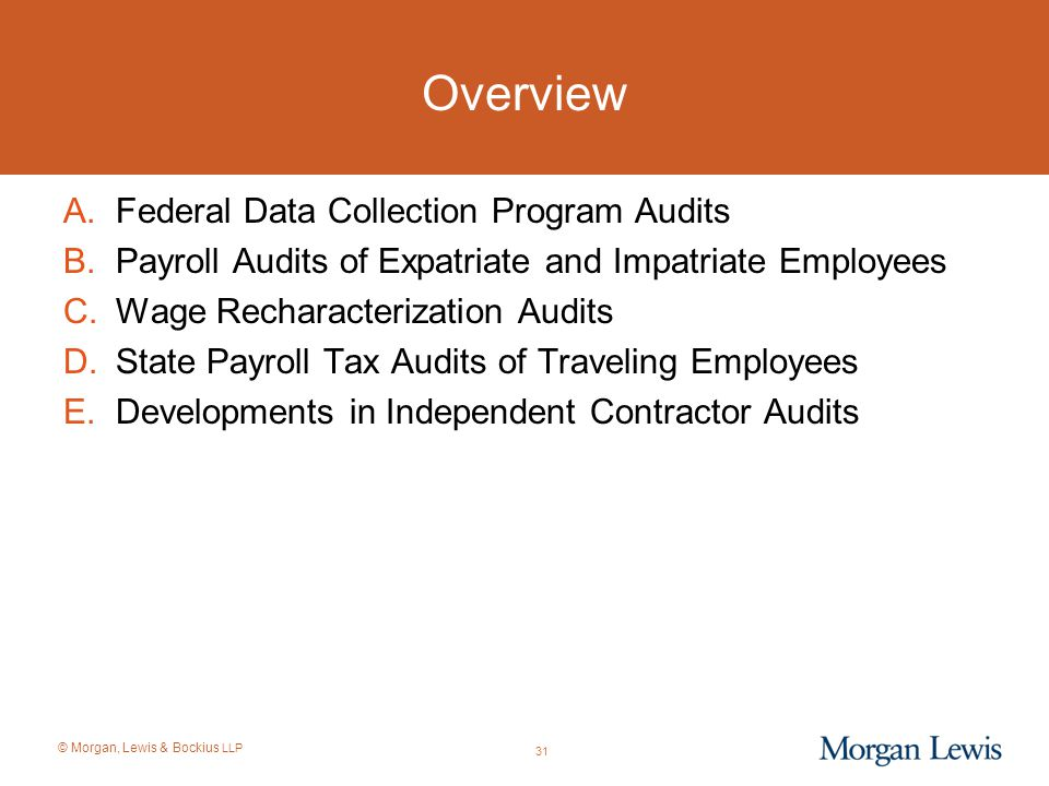 © Morgan, Lewis & Bockius LLP Overview A.Federal Data Collection Program Audits B.Payroll Audits of Expatriate and Impatriate Employees C.Wage Rechara