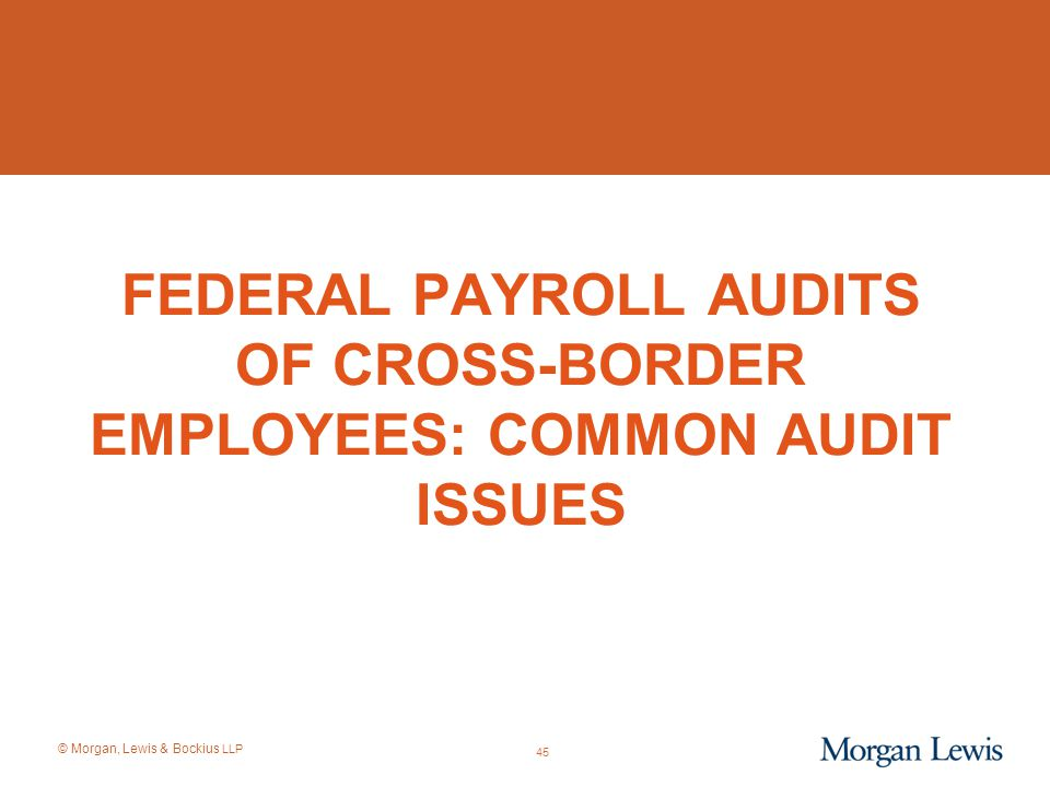 © Morgan, Lewis & Bockius LLP 45 FEDERAL PAYROLL AUDITS OF CROSS-BORDER EMPLOYEES: COMMON AUDIT ISSUES