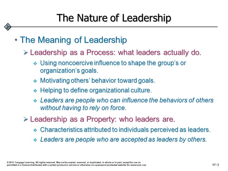 The Nature of Leadership The Meaning of LeadershipThe Meaning of Leadership  Leadership as a Process: what leaders actually do.