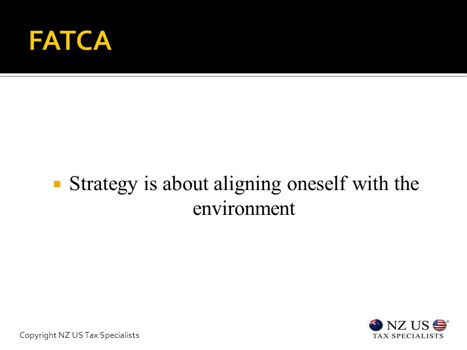  Strategy is about aligning oneself with the environment Copyright NZ US Tax Specialists