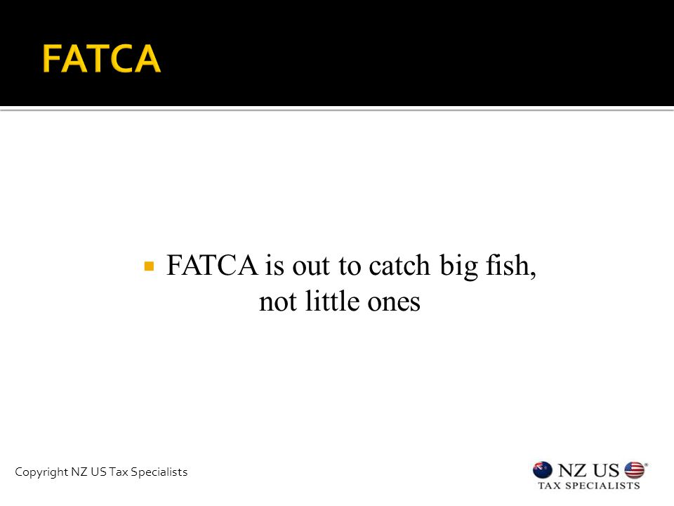  FATCA is out to catch big fish, not little ones Copyright NZ US Tax Specialists
