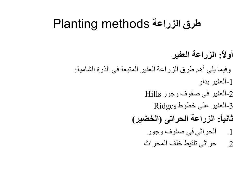 طرق الزراعة Planting methods أولاً: الزراعة العفير وفيما يلى أهم طرق الزراعة العفير المتبعة فى الذرة الشامية: 1-العفير بدار 2-العفير فى صفوف وجور Hill