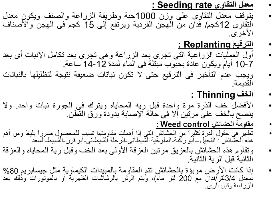 معدل التقاوى Seeding rate : يتوقف معدل التقاوى على وزن 1000حبة وطريقة الزراعة والصنف ويكون معدل التقاوى 12كجم/ فدان من الهجن الفردية ويرتفع إلى 15 كجم