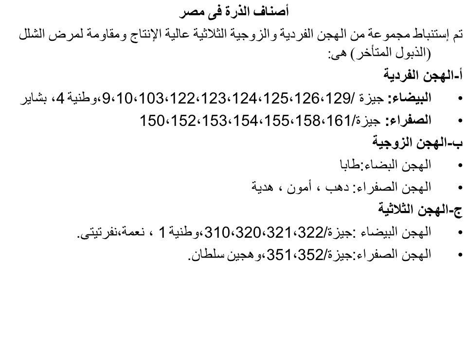 أصناف الذرة فى مصر تم إستنباط مجموعة من الهجن الفردية والزوجية الثلاثية عالية الإنتاج ومقاومة لمرض الشلل (الذبول المتأخر) هى: أ-الهجن الفردية البيضاء: