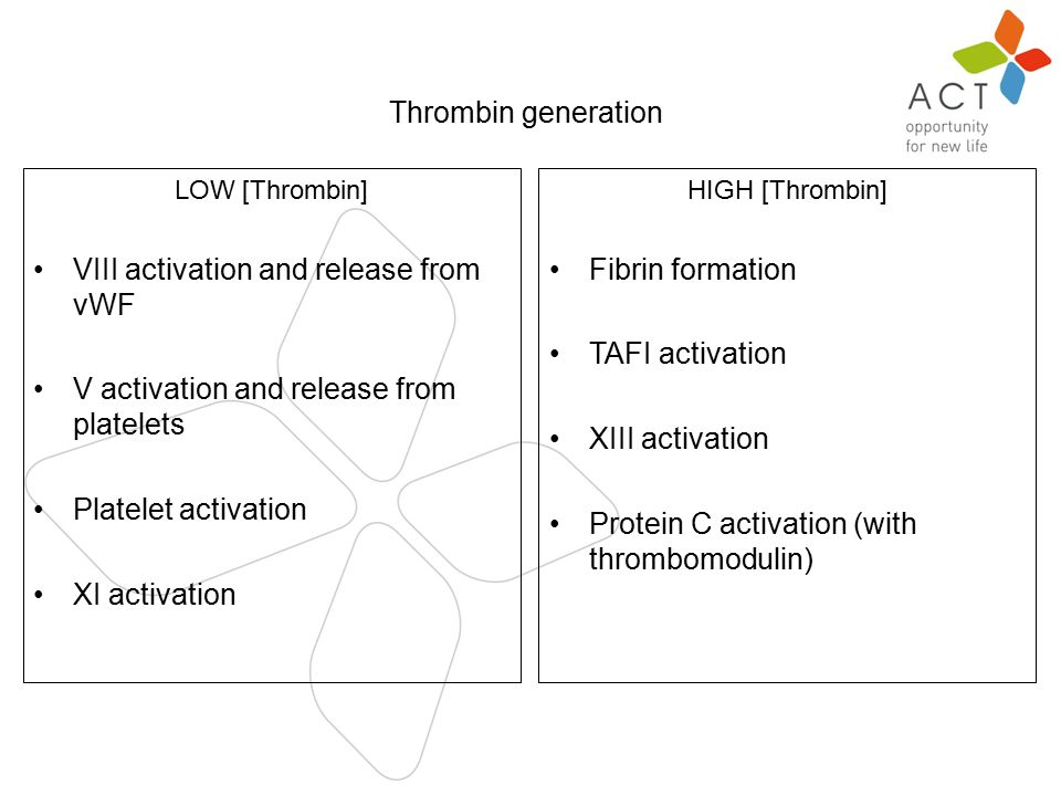 n Thrombin generation LOW [Thrombin] VIII activation and release from vWF V activation and release from platelets Platelet activation XI activation HIGH [Thrombin] Fibrin formation TAFI activation XIII activation Protein C activation (with thrombomodulin)
