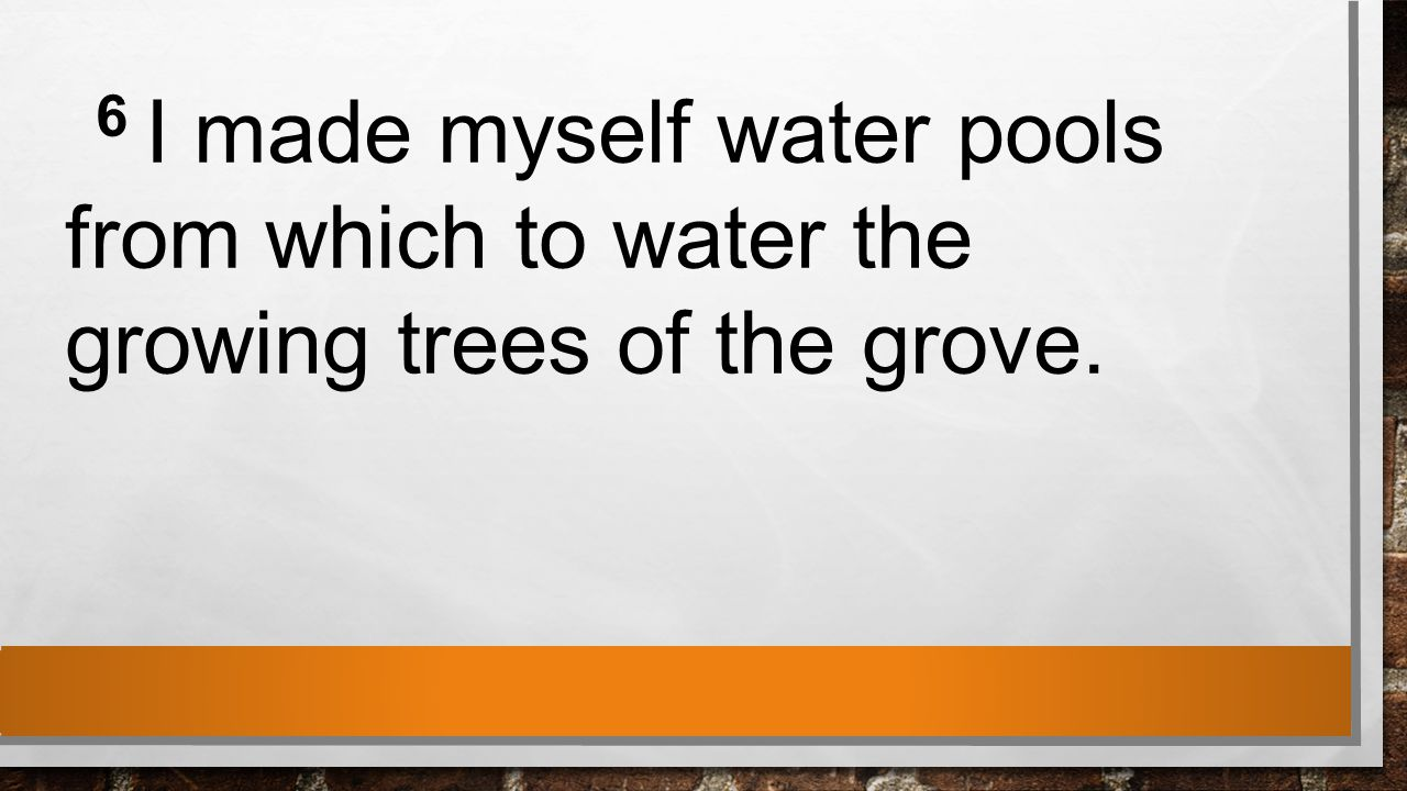 6 I made myself water pools from which to water the growing trees of the grove.