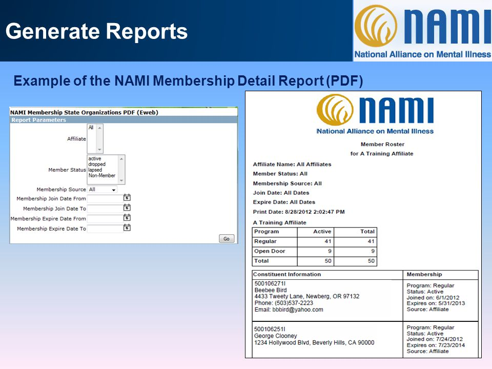 Generate Reports Example of the NAMI Membership Detail Report (Excel) Part 1 of 2