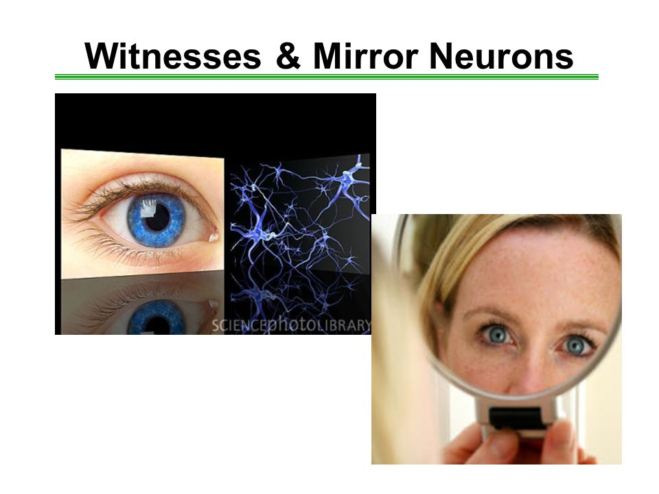 Witnesses & Mirror Neurons
