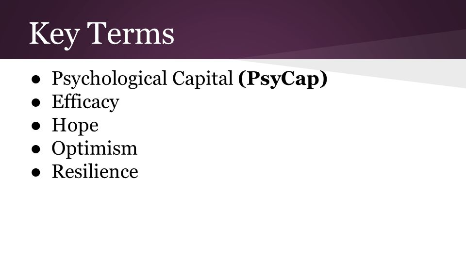 Key Terms ● Psychological Capital (PsyCap) ● Efficacy ● Hope ● Optimism ● Resilience