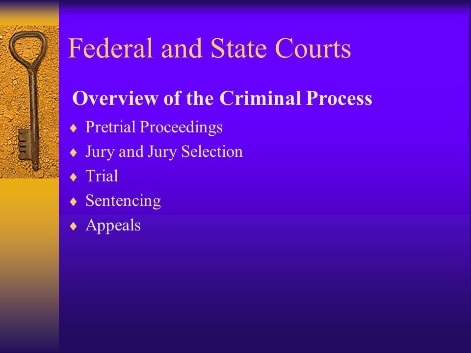 Federal and State Courts  Pretrial Proceedings  Jury and Jury Selection  Trial  Sentencing  Appeals Overview of the Criminal Process