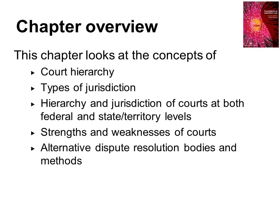 Chapter overview This chapter looks at the concepts of  Court hierarchy  Types of jurisdiction  Hierarchy and jurisdiction of courts at both federa
