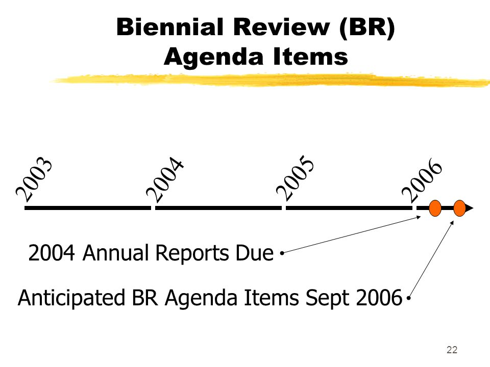 22 Biennial Review (BR) Agenda Items 2 0 0 4 2 0 0 3 2 0 0 5 2006 Anticipated BR Agenda Items Sept 2006 2004 Annual Reports Due