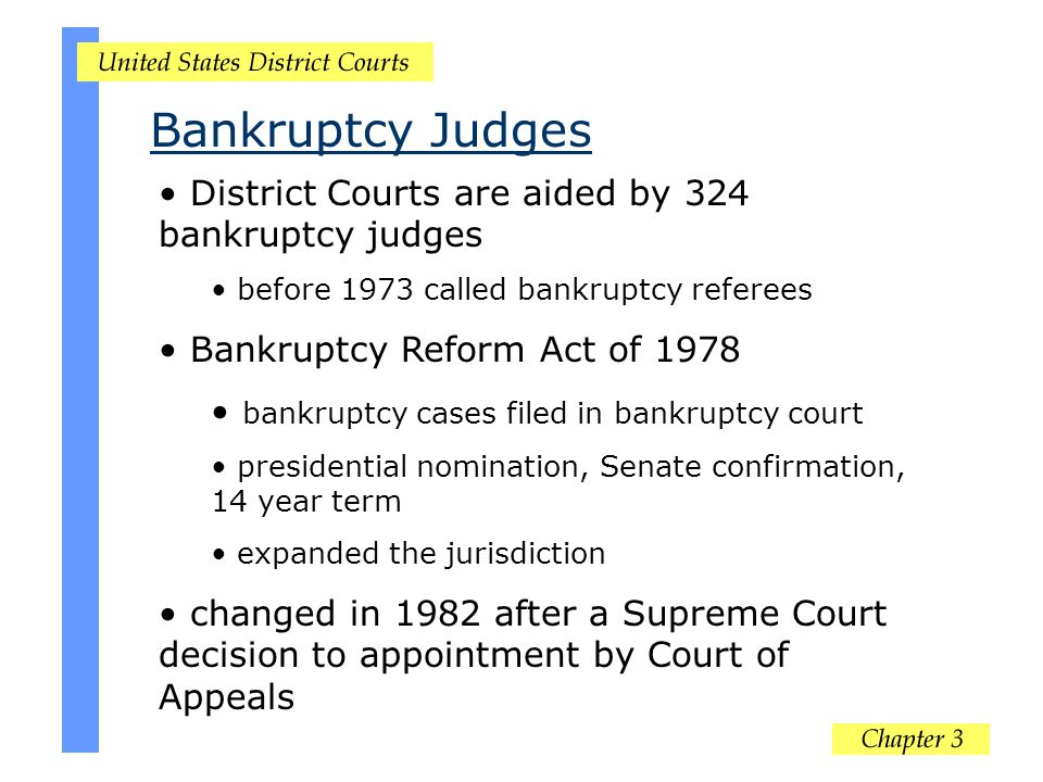 District Courts are aided by 324 bankruptcy judges before 1973 called bankruptcy referees Bankruptcy Reform Act of 1978 bankruptcy cases filed in bank
