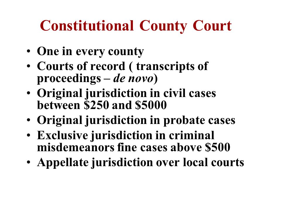 County Trial Court Limited jurisdiction Three types of courts –Constitutional court –County court at law –Probate court