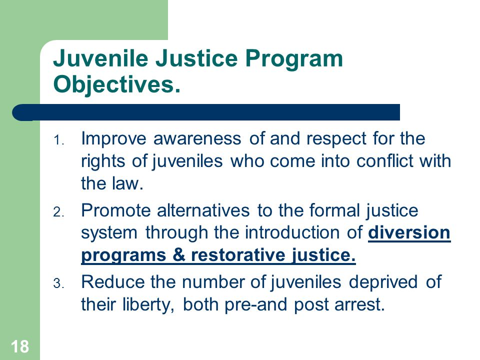 18 Juvenile Justice Program Objectives.1.