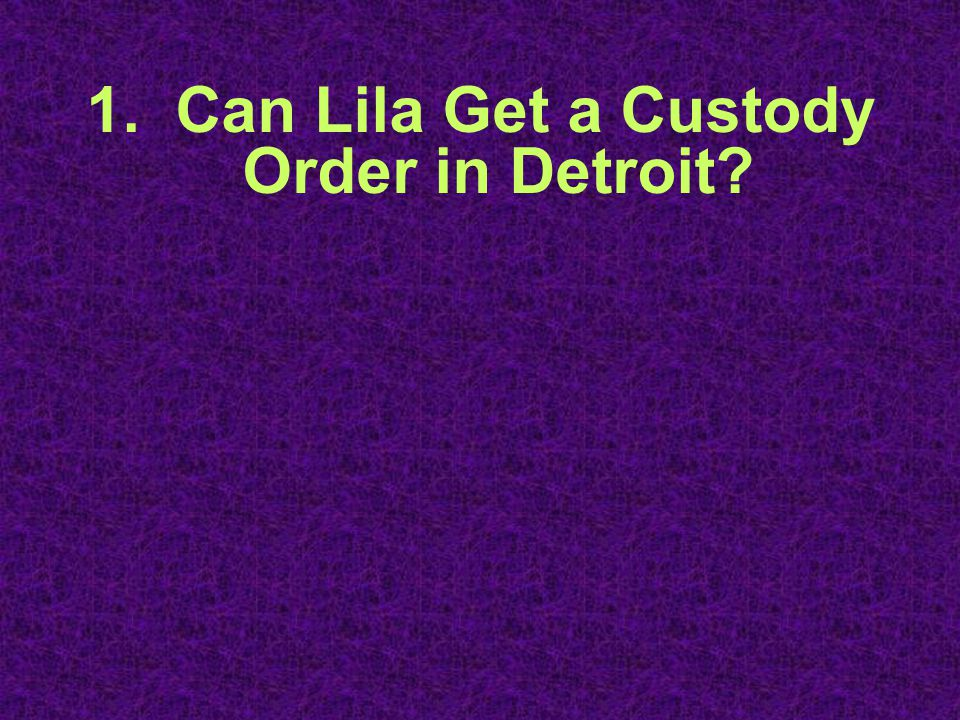 1. Can Lila Get a Custody Order in Detroit