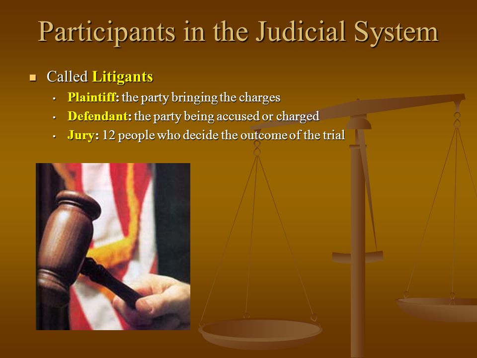 Participants in the Judicial System Called Litigants Called Litigants Plaintiff: the party bringing the charges Plaintiff: the party bringing the char
