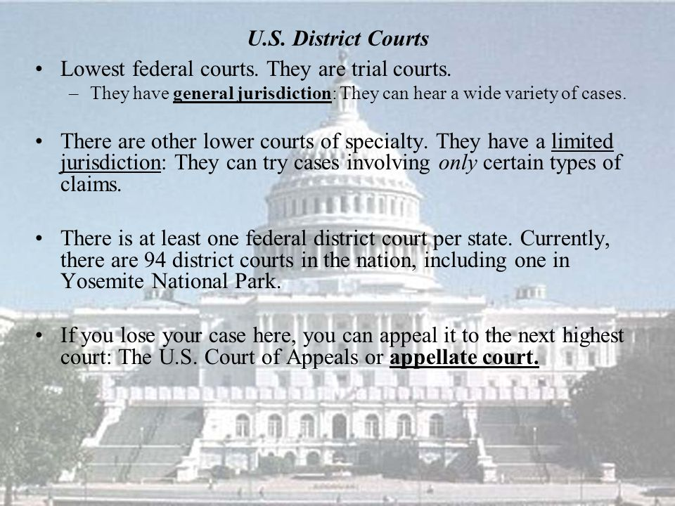 U.S. District Courts Lowest federal courts. They are trial courts.