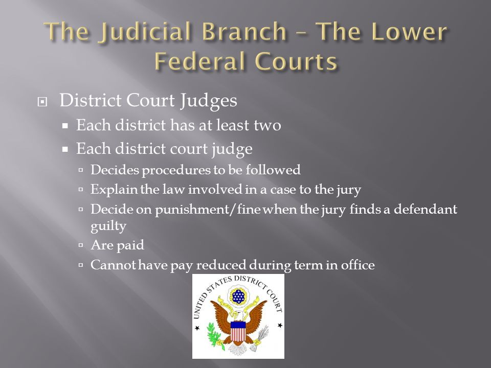  District Court Judges  Each district has at least two  Each district court judge  Decides procedures to be followed  Explain the law involved in