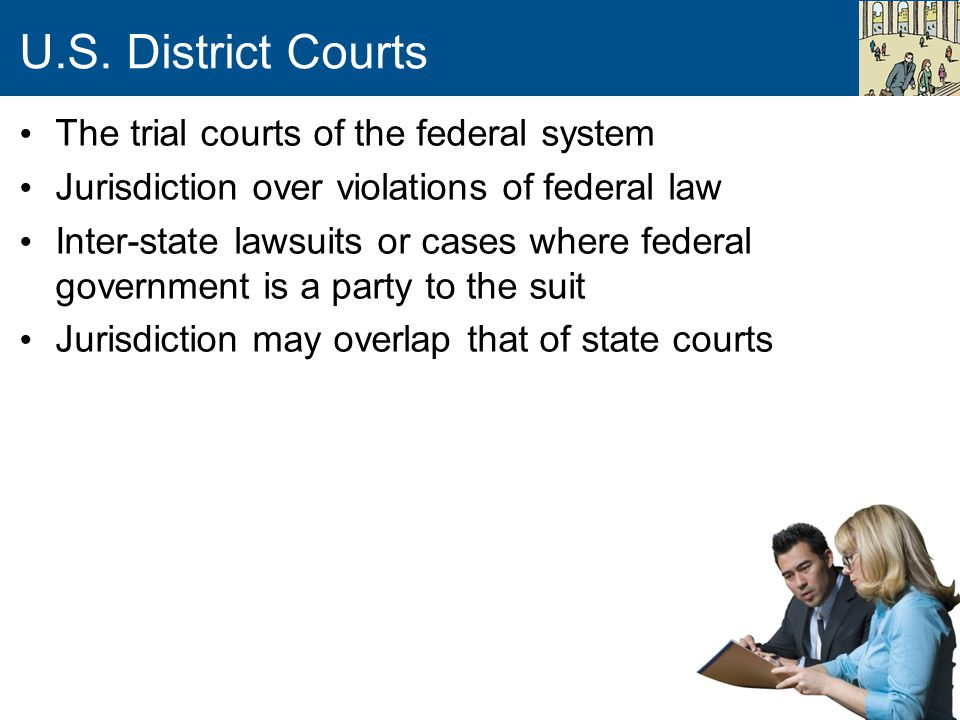U.S. District Courts The trial courts of the federal system Jurisdiction over violations of federal law Inter-state lawsuits or cases where federal go