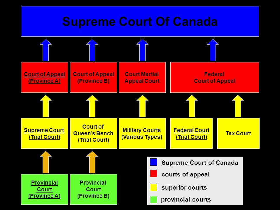 Provincial Court (Province A) Provincial Court (Province B) Federal Court (Trial Court) Tax Court Supreme Court (Trial Court) Court of Queen's Bench (