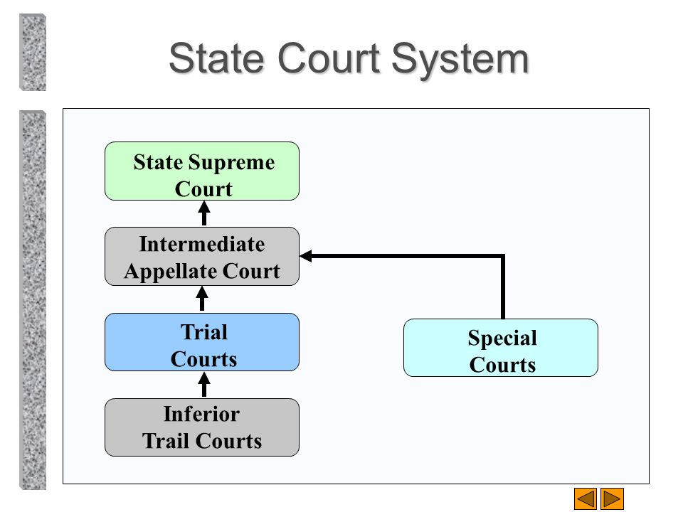 State Court System State Supreme Court Intermediate Appellate Court Trial Courts Inferior Trail Courts Special Courts