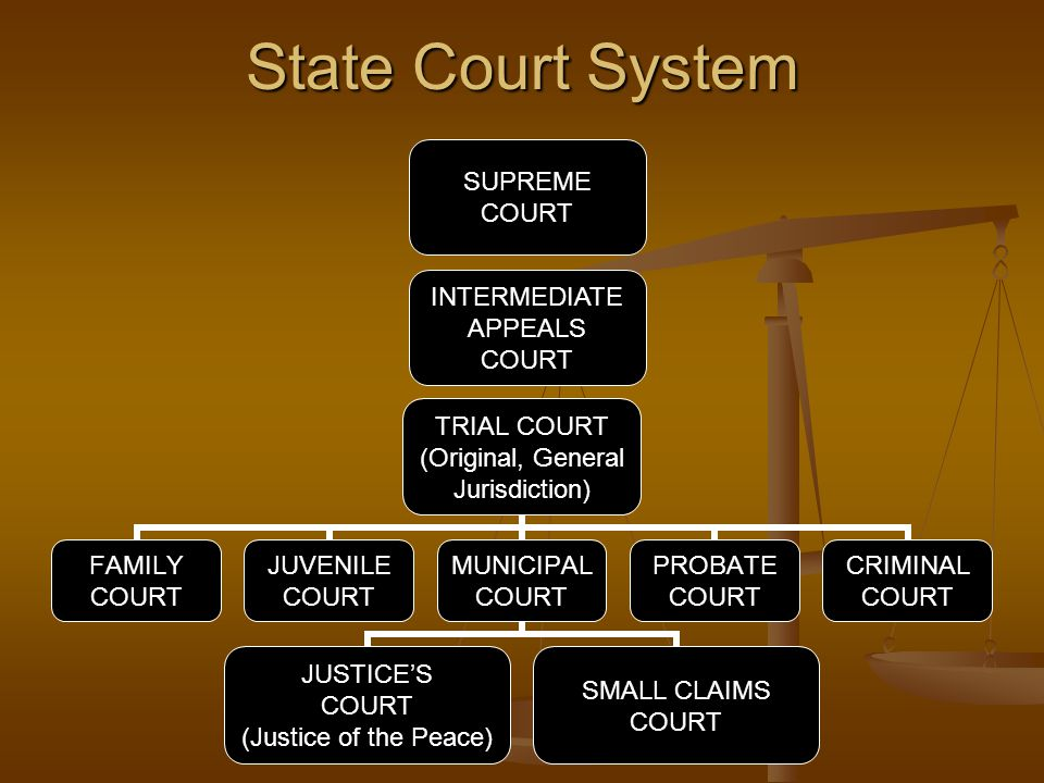 State Court System TRIAL COURT (Original, General Jurisdiction) FAMILY COURT JUVENILE COURT MUNICIPAL COURT JUSTICE'S COURT (Justice of the Peace) SMA