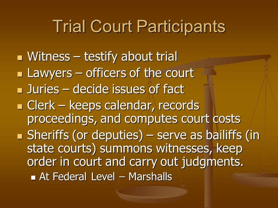 Trial Court Participants Witness – testify about trial Witness – testify about trial Lawyers – officers of the court Lawyers – officers of the court J