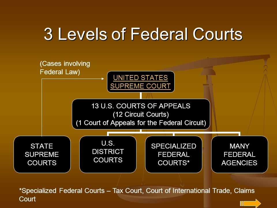 3 Levels of Federal Courts UNITED STATES SUPREME COURT 13 U.S. COURTS OF APPEALS (12 Circuit Courts) (1 Court of Appeals for the Federal Circuit) STAT