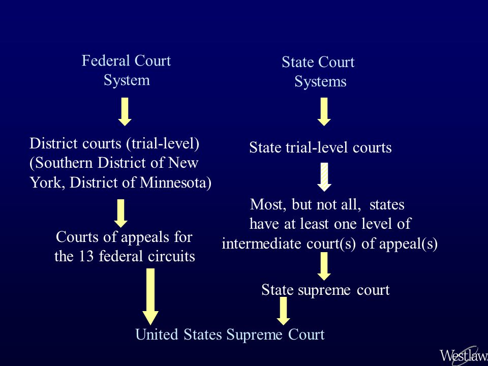 Federal Court System State Court Systems District courts (trial-level) (Southern District of New York, District of Minnesota) State trial-level courts