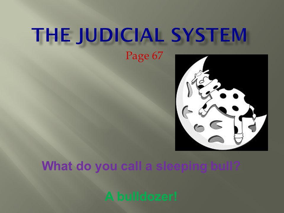 Virginia Court System
