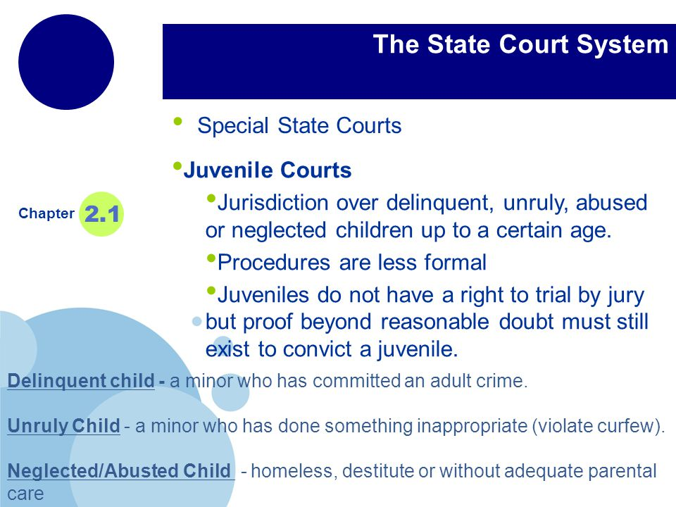 www.company.com Company LOGO The State Court System Special State Courts Chapter 2.1 Juvenile Courts Jurisdiction over delinquent, unruly, abused or neglected children up to a certain age.