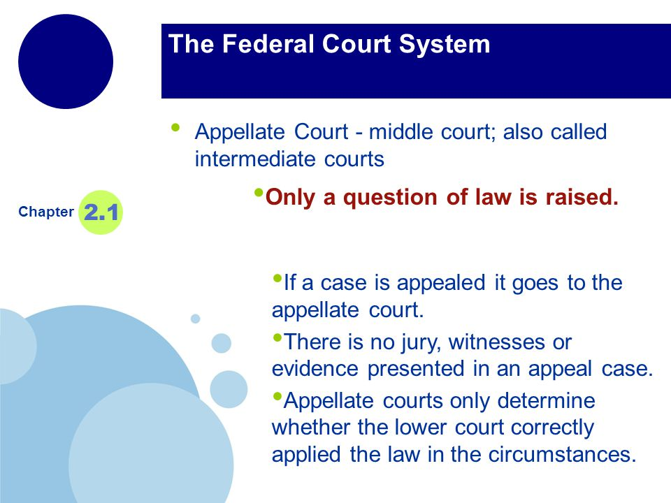 www.company.com Company LOGO The Federal Court System Appellate Court - middle court; also called intermediate courts Chapter 2.1 If a case is appealed it goes to the appellate court.